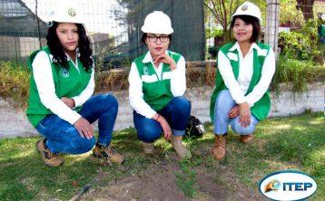 Alumnos de Seguridad de ITEP realizaron el plantado de árboles
